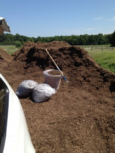 This is my local Fairfax County mulch pile only 1/2 mile from home! I love being green!