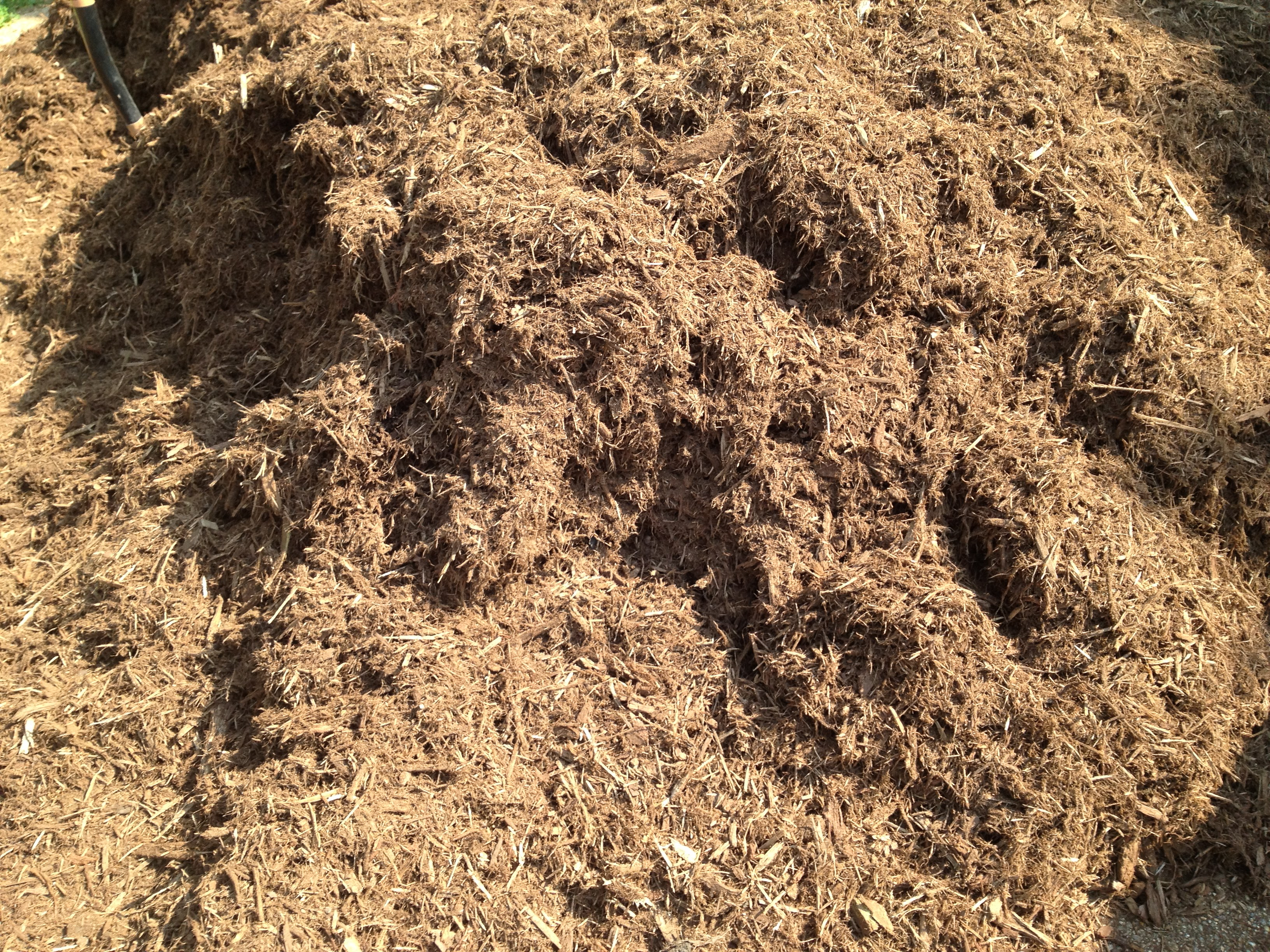 Backyard Mulch Pile : Lisa Earthgirl ? Gardening Tips and Helpful Advice ? Types of Mulch