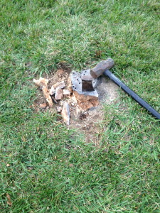 After a few months of the epsom salt treatment this stump was chipped away in about a half an hour.