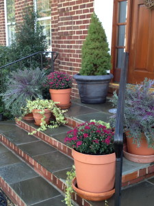 This year's Fall colors on my porch are deep pinks, purples and teals.