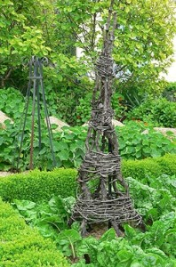 These topiary forms are made with harvested vines and branches.