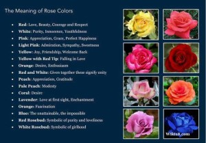 Each color has a different meaning to convey your sentiment.
