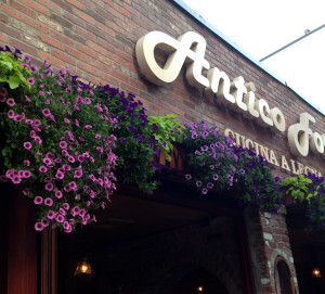 The flowers above the entrances of shop and restaurants were amazingly beautiful all over Boston.