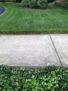 A fresh edging sets the tone for the walkways and gardens.
