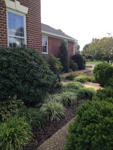 Give walkways a good sweeping or even a powerwashing to get them ready for holiday visitors.