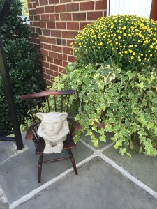 I like to have some flowers by all the entry doors to welcome visitors. This year I used beautiful deep yellow mums by the front door. My favorite gargoyle welcoming visitors, too!