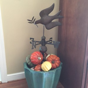 I love to change up the weathervane for each season. This time of year I surround it with gourds.