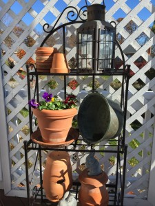 This is also the perfect time to bring in your terracotta pots and drain dishes for the winter- more on this one soon----- Have a great weekend!