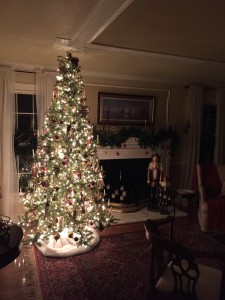 The living room tree all aglow!