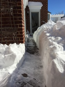 Prioritize clearing a path out from your doors first. For safety!