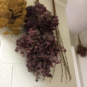 I hang lots of the flowers from the garden from peg racks to let them dry, and store them there until they make their way into a flower arrangement. It adds color, and I love having a reminder of Summer all Winter long. Here I have yarrow, oregano, pussy willow, bay leaves, lavendar and many others. Easy to do!