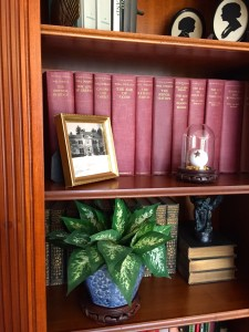 Don't forget your bookcases- just a small pot of leaves or ivy can breathe some color back into an otherwise missable spot.