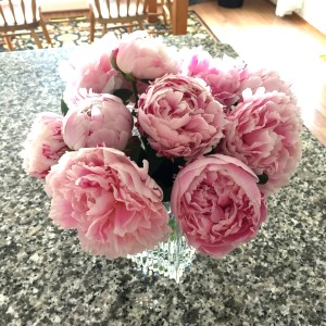 I can't say enough about how much I love these peonies. This was the first year that I have had them, and they are  quickly becoming my favorite spring flower. These lasted more than a week after cutting them and bringing them inside!
